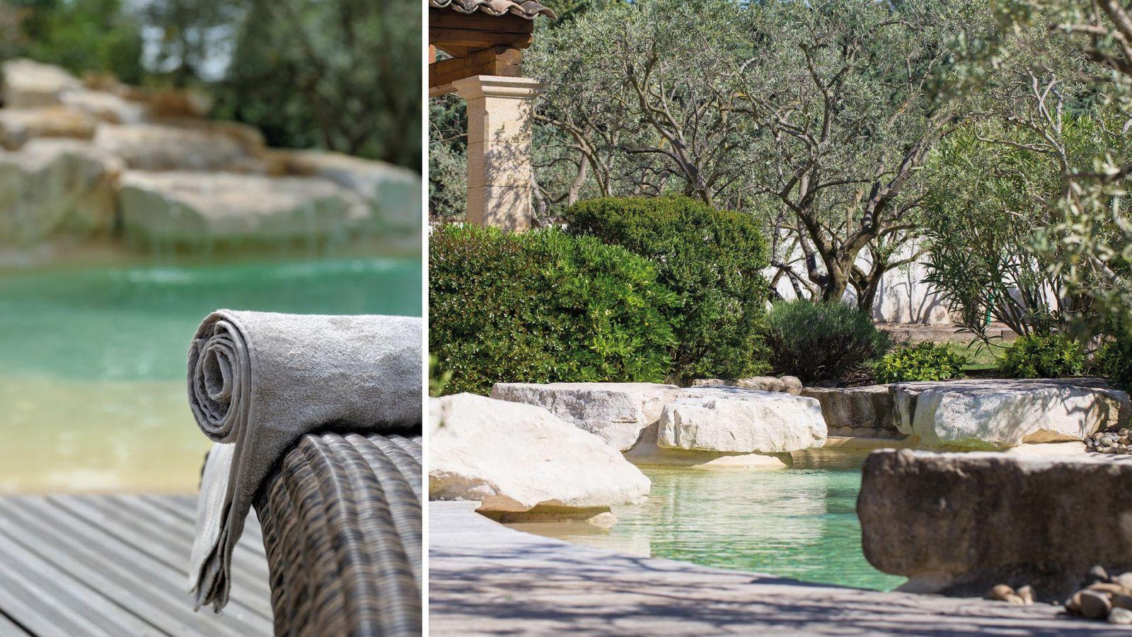 Outstanding villa Rental in Saint Remy de Provence 8