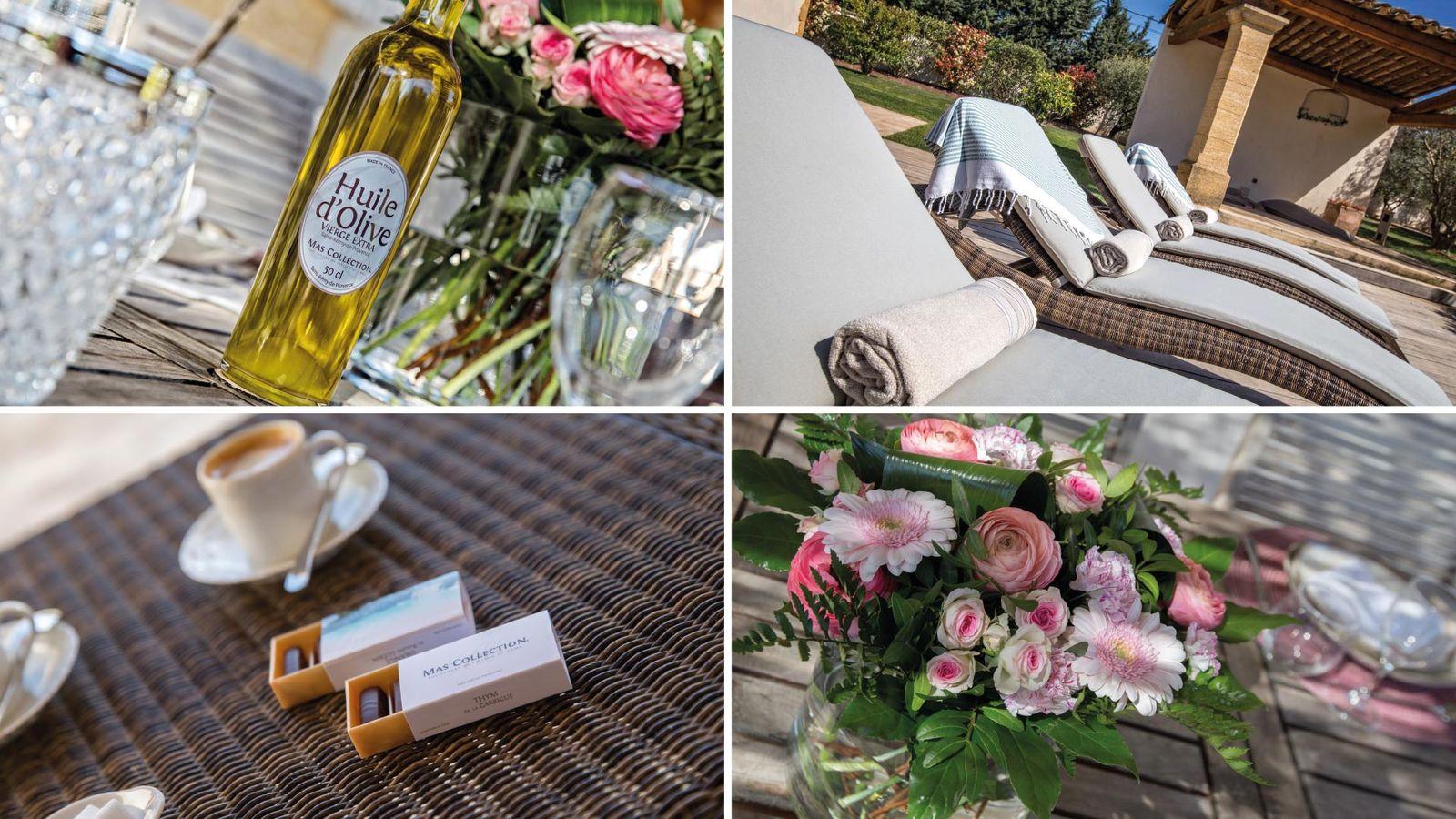 Outstanding villa Rental in Saint Remy de Provence 15