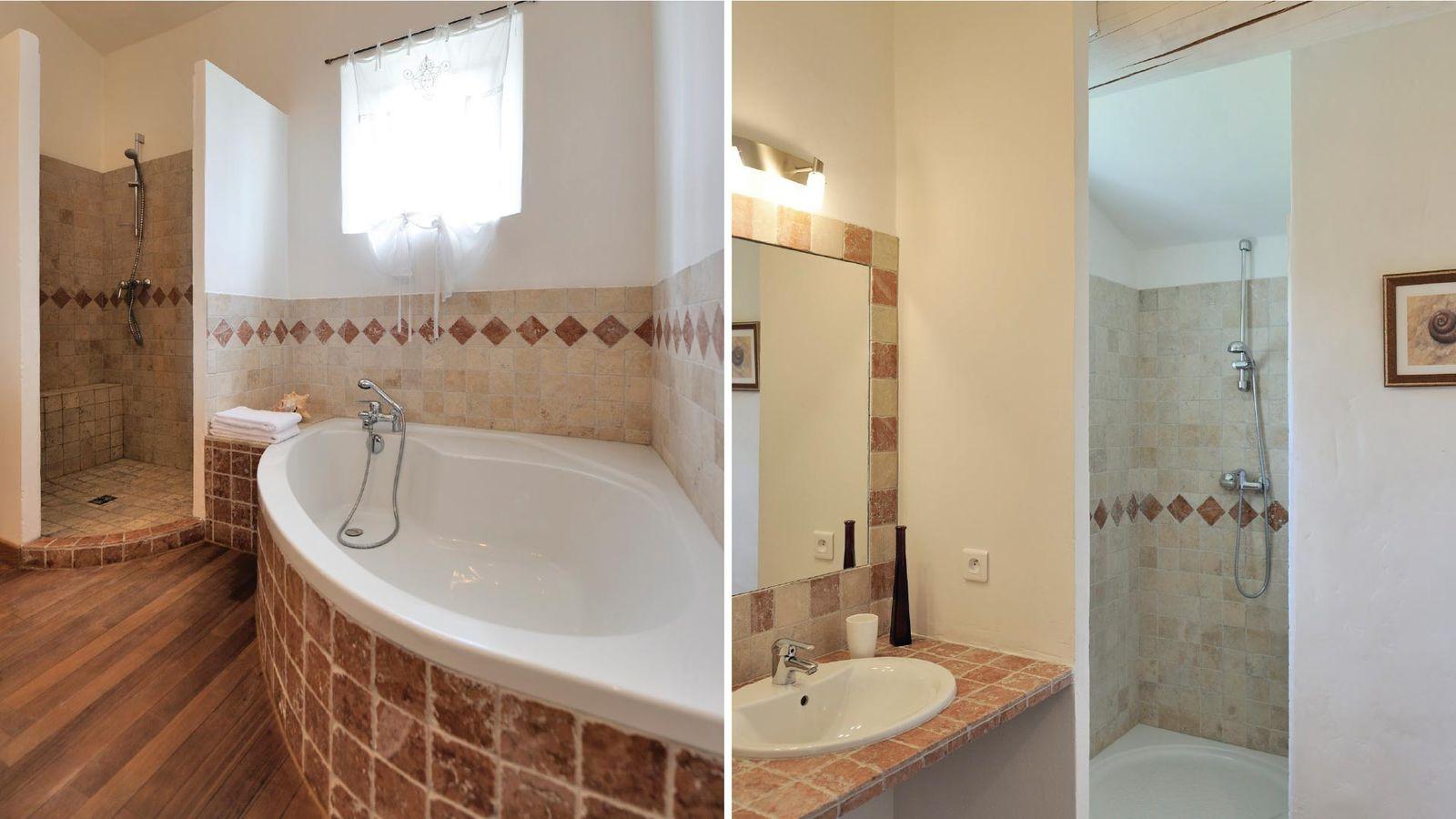 Outstanding villa Rental in Saint Remy de Provence 2