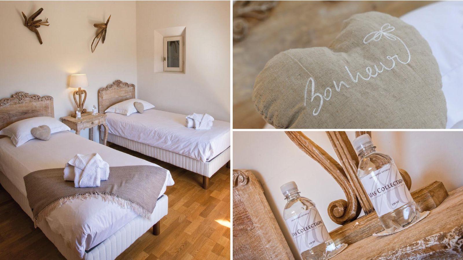 Outstanding villa Rental in Saint Remy de Provence 3