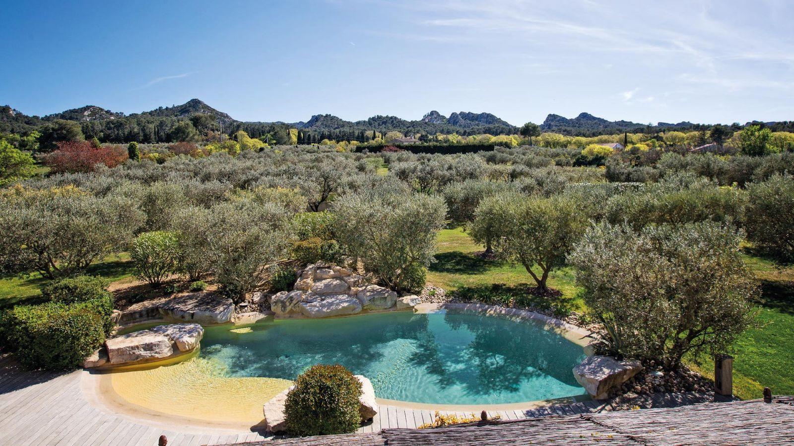 Outstanding villa Rental in Saint Remy de Provence 6