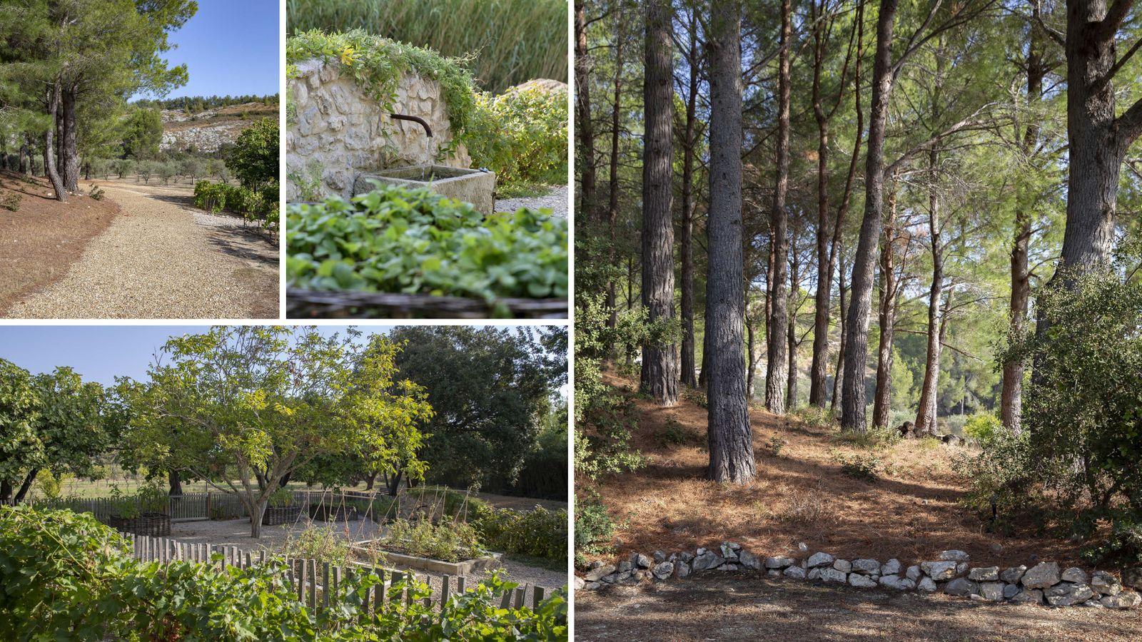 Réservez votre location de vacances de luxe Alpilles Provence