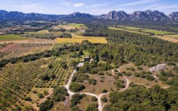 Located in Eygalieres, this luxury property offers a unique spirit and high-end services, consisting of two buildings facing the Alpilles